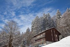 Free Winter Landscape Stock Photo - 20279570