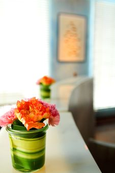 Free Beautiful Flower In Room Stock Images - 20279614