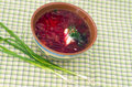 Free Bowl Of The Ukrainian Borsch Stock Images - 20285844