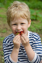 Free Child And Berries Stock Images - 20289834