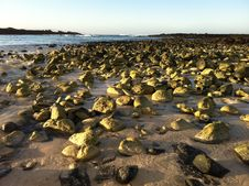 Rocks On The Beach In Sunlight Stock Photo
