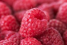 Free Sweet Raspberries Closeup Background Royalty Free Stock Photos - 20281708