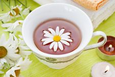 Free Camomile Stock Photography - 20284482