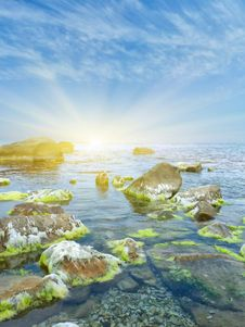 Free Stones Into The Sea Stock Images - 20284894