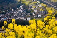 Free Rural Landscape Stock Image - 20286181