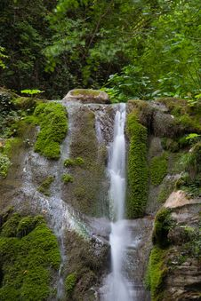 Free Waterfall In Forest Royalty Free Stock Images - 20286209