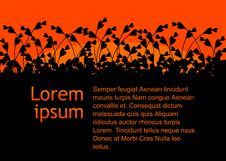 Free Black And Orange Abstract Background Royalty Free Stock Photography - 20289097