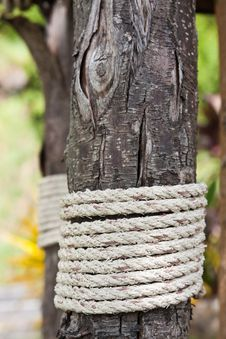 Free Rope And Wood Stock Image - 20289241