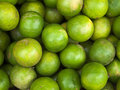 Free Many Of The Limes Royalty Free Stock Image - 20290316