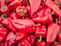 Free Background Of Many Big Red Peppers Stock Image - 20294371