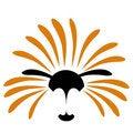 Free Solar Lion  Illustration Stock Photos - 20294773