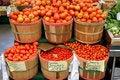 Free Bushels Of Tomatoes Royalty Free Stock Photo - 20296905