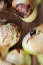 Free Group Of Onions Stock Photos - 20296963