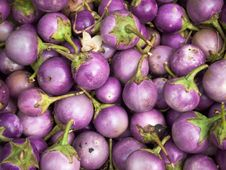 Free Purple Eggplants Royalty Free Stock Photography - 20290287