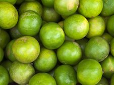 Many Of The Limes Royalty Free Stock Image