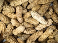 Free Boiled Peanuts Royalty Free Stock Images - 20290329
