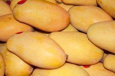 Free Mango Stock Photo - 20290710