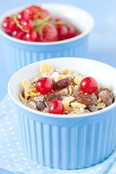 Free Muesli And Fruits Stock Images - 20292614