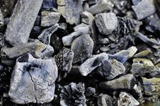 Free Charcoals Royalty Free Stock Image - 20293656