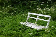 Free White Bench Stock Photography - 20294922