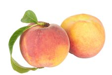 Free Ripe Peach With Leaf Stock Image - 20295671