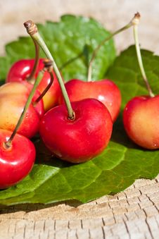 Free Cherries Royalty Free Stock Photo - 20295875