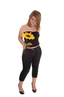 Free Teen Holding Sunflower. Stock Images - 20296264