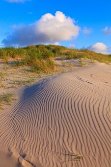 Free Sand Dunes With Helmet Grass Royalty Free Stock Photo - 20296635