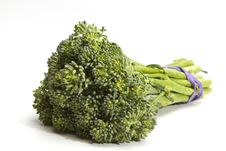 Free Broccoli Stock Images - 20296794