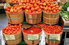 Free Bushels Of Tomatoes Royalty Free Stock Photo - 20296905