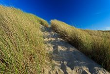 Free Sand Dunes With Helmet Grass Stock Photography - 20296962