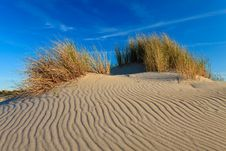 Free Sand Dunes With Helmet Grass Royalty Free Stock Image - 20296996