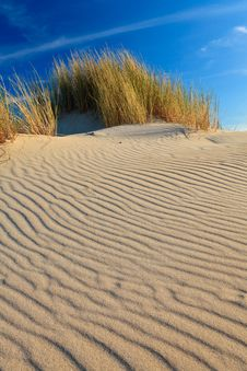 Free Sand Dunes With Helmet Grass Stock Photography - 20297042