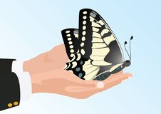 Free Butterfly In His Hands Royalty Free Stock Photos - 20297388