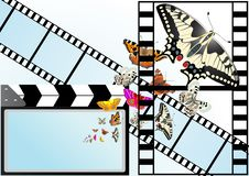 Free Butterfly On The Background Of The Film Stock Photo - 20297390