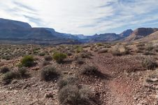 Free AZ-Grand Canyon-Clear Creek Trail Stock Images - 20298464