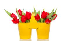 Free Red Tulips In A Yellow Vase Royalty Free Stock Photo - 20298595