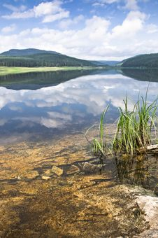 Free Coast Of Lake Royalty Free Stock Images - 20298869
