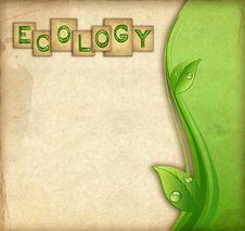 Free Ecology Background Stock Image - 20298871