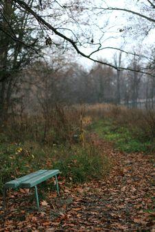 Free Autumn Park Stock Image - 2030301