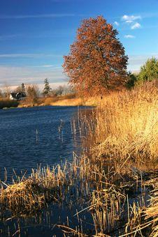 Free Autumn Landscape Stock Images - 2030664