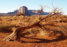 Free Monument Valley Navajo Tribal Park Stock Photos - 2031783