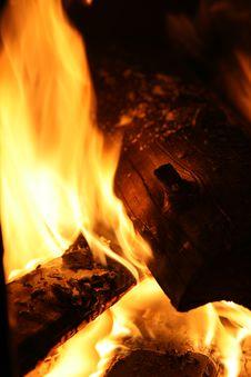 Free Campfire - Wood Burning Stock Photo - 2031820