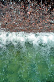 Free Water Drop Stock Photo - 2032200