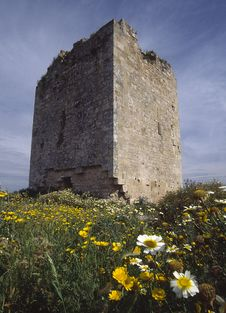 Free Roman Tower With Meadow Flowers In Foregorund Royalty Free Stock Image - 2032406