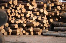 Free Lumber Royalty Free Stock Photos - 2033648