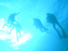 Free Divers On-line Stock Images - 2034494