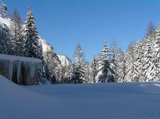 Free Snowfall Stock Photos - 2034583
