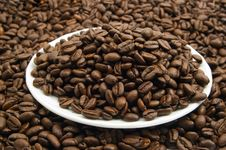 Free Saucer With Coffee Beans Stock Photo - 2036660