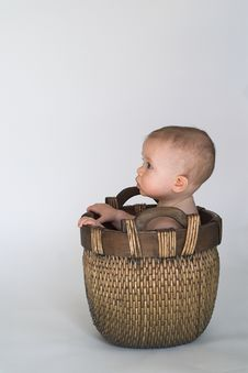 Free Basket Baby Royalty Free Stock Photo - 2037105